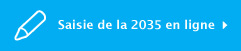 Saisie de la 2035 en ligne